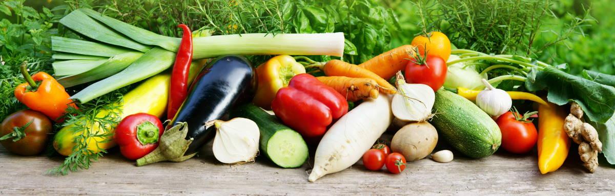 Saisonales Gemüse aus der Pfalz und dem Badischen