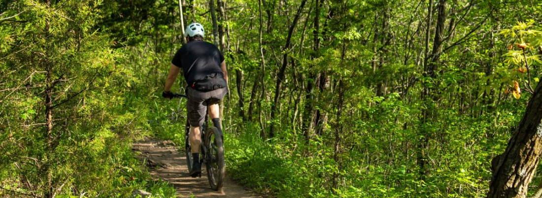 Outdoor-Sport in der Pfalz: Mountainbiking, Fahrrad fahren, Golf, Tennis, Schwimmen, Rudern, Segelflug, Wandern