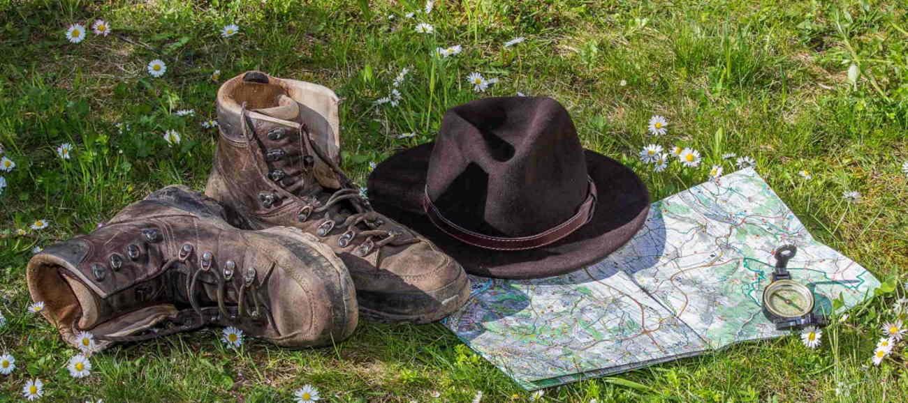 Wandern in der Pfalz: Vereine im Überblick