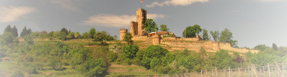 Wachtenburg bei Wachenheim, Landkreis Bad Dürkheim